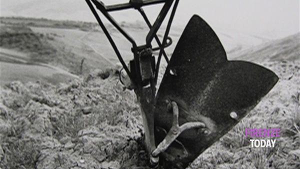 Toscana scomparsa: il podere a mezzadria a Le Murate