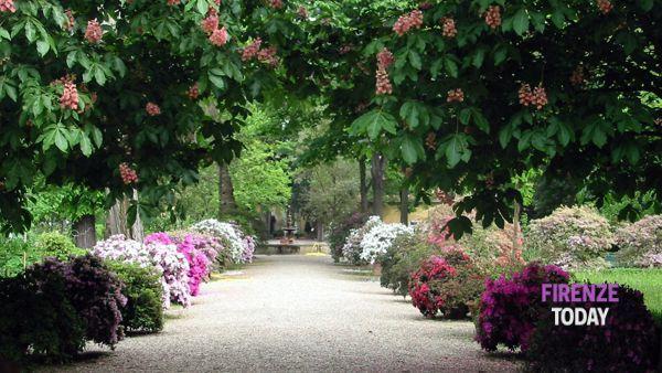 L'Orto botanico festeggia 470 anni con eventi ed iniziative