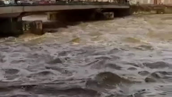 Paura a Firenze, Arno in piena / VIDEO
