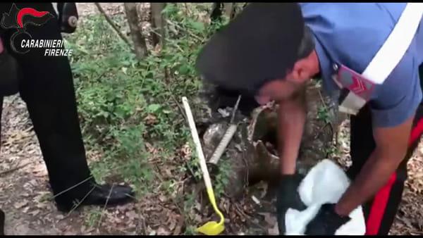 Spaccio di droga nei boschi, maxi operazione dei carabinieri / VIDEO
