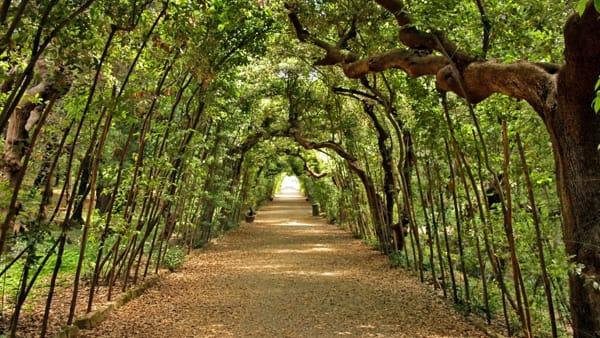Viste guidate gratuite nei giardini di Firenze grazie al progetto Amir