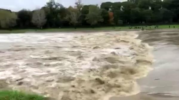 Maltempo: l'Arno in piena alla pescaia dell'Isolotto / VIDEO