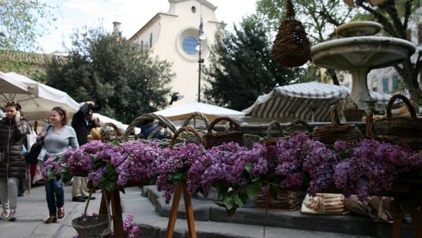 Fierucola di San Michele