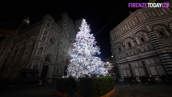 Natale 2020, Firenze si illumina: acceso l'albero in piazza Duomo / VIDEO E FOTO
