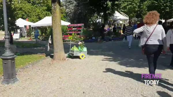 Fiori e piante al Giardino dell'Orticoltura / VIDEO