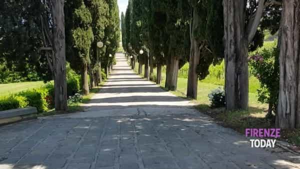 Riapertura: Villa Castelletti riparte con i picnic glamour nello storico parco/ VIDEO