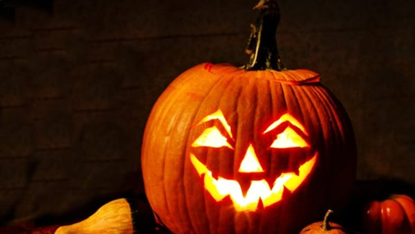 Zucca Di Halloween Piu Grande Del Mondo.Perche Si Festeggia Halloween E Si Usa La Zucca L Origine Di Dolcetto O Scherzetto